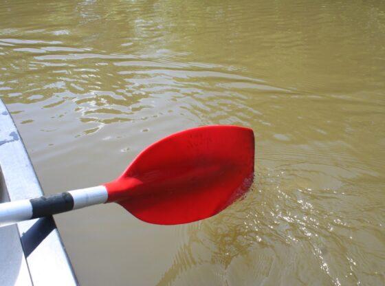 Paddeln und Wasserwandern auf den Leipziger Seen und Flüssen