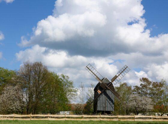 Bockwindmühle auf dem Steinberg Holzhausen Leipzig